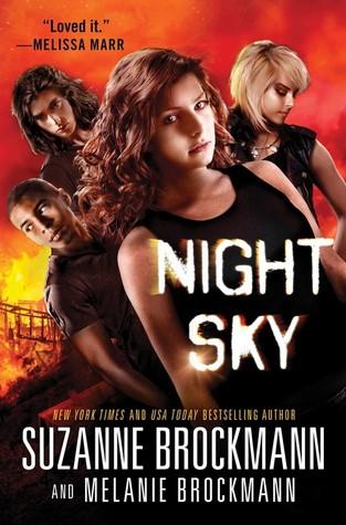 Night Sky (Night Sky, #1)