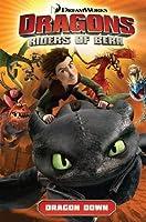 DreamWorks Dragons: Dragon Down