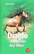 Diablo: A Day Like Any Other