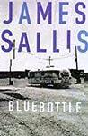 Bluebottle (Lew Griffin, #5)