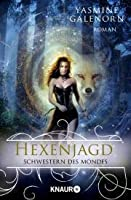 Hexenjagd (Otherworld / Sisters of the Moon, #13)