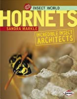 Insect World: Hornets: Incredible Insect Architects