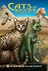 Cats of Egypt