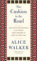 Cushion in the Road: Meditation and Wandering as the Whole World Awakens to Being in Harm's Way