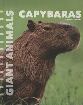 Capybaras  by  Susan Schafer