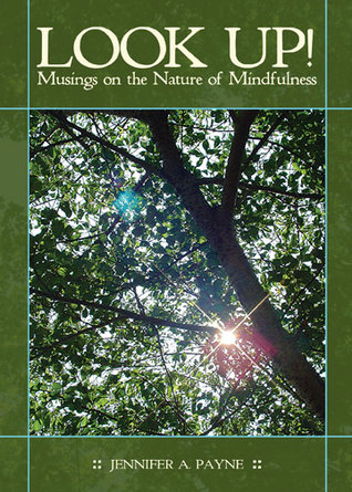 LOOK UP! Musings on the Nature of Mindfulness
