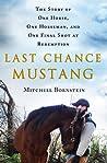 Last Chance Mustang by Mitchell Bornstein