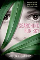 Searching for Sky