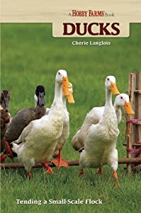 Ducks: Tending a Small-Scale Flock for Pleasure and Profit