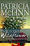 The Beginning (Wyoming Wildflowers, #0.5)