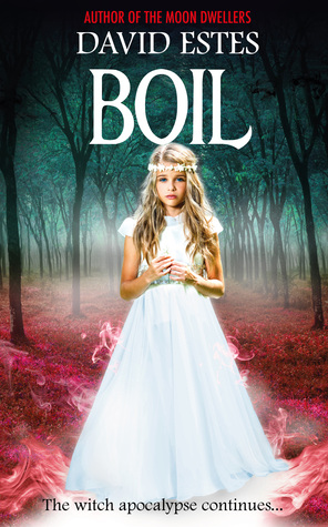 Boil by David Estes
