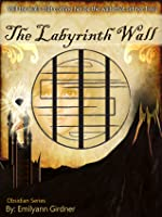 The Labyrinth Wall