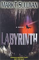 Labyrinth: A Novel