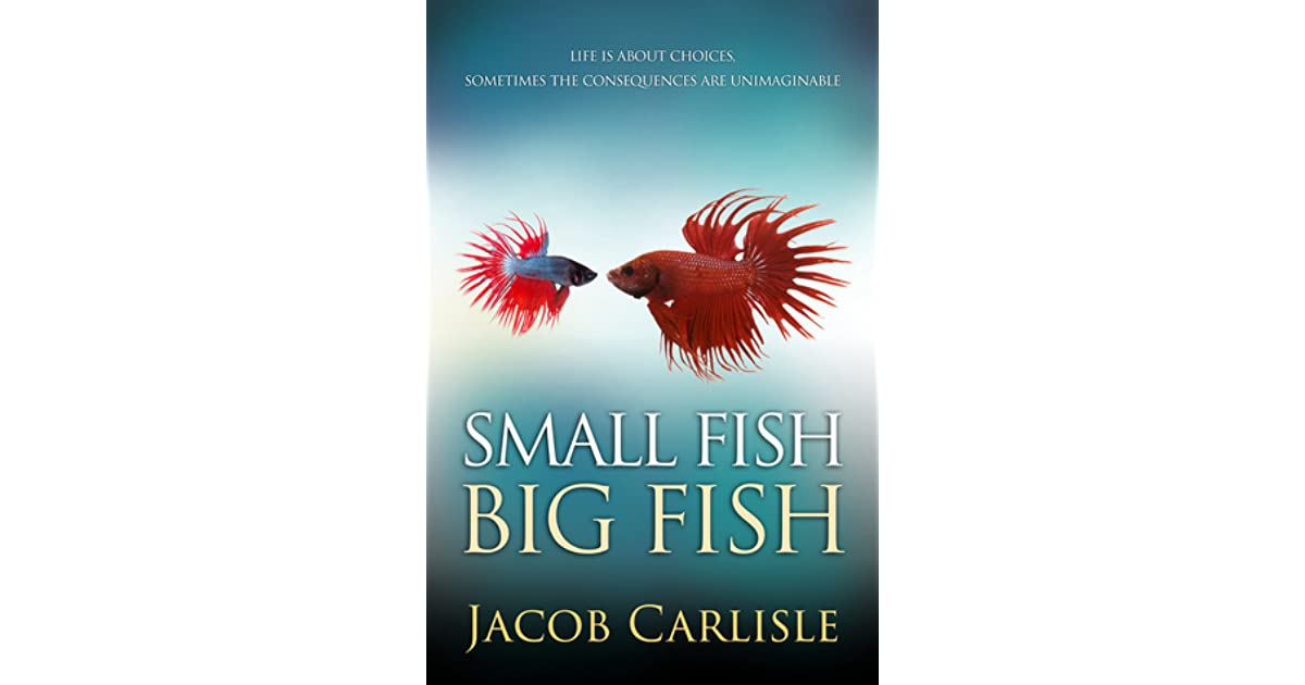 Book giveaway for small fish big fish by p j mcdermott for Big fish book