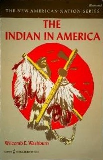 The Indian in America