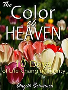 The Color of Heaven: 10 Days of Life-Changing Clarity