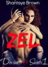Zel (Deviants & Saints, #1)