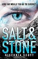 Salt & Stone (Fire & Flood, #2)