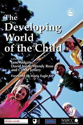 The-Developing-World-of-the-Child-