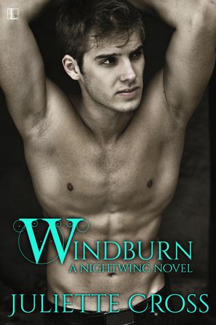 Windburn (Nightwing, #2)