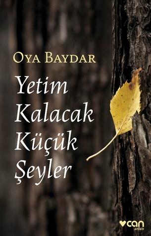 Yetim Kalacak Küçük Şeyler by Oya Baydar