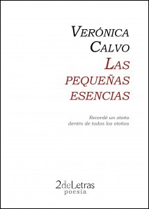 Las pequeñas esencias by Verónica Calvo