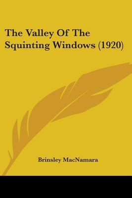 The Valley Of The Squinting Windows (1920)