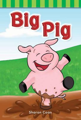 Big Pig (Short Vowel Rimes)