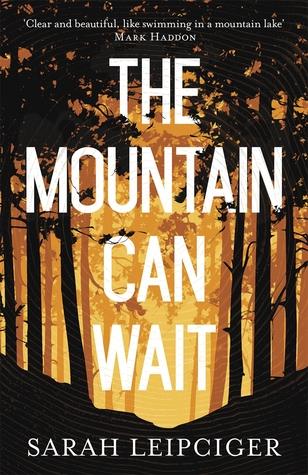 The Mountain Can Wait by Sarah Leipciger