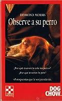 Observe a Su Perro