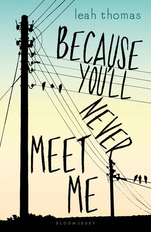 Because You'll Never Meet Me (Because You'll Never Meet Me, #1)
