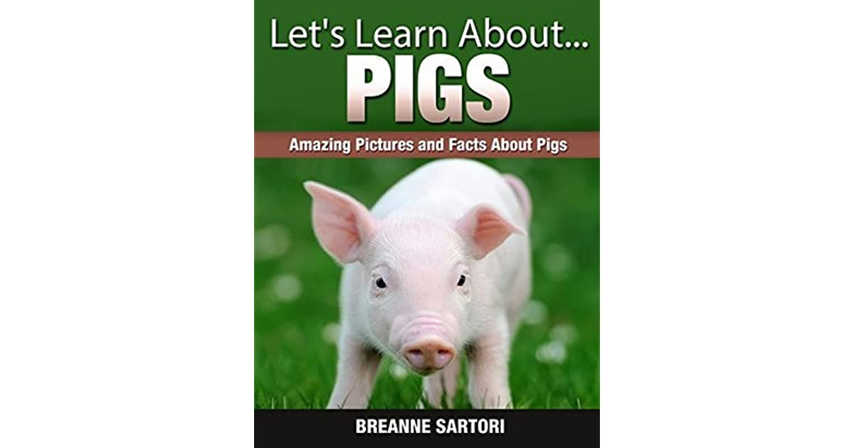 Pigs: Amazing Pictures and Facts About Pigs by Breanne Sartori