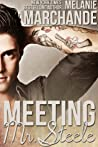 Meeting Mr. Steele (A Novel Deception, #3)