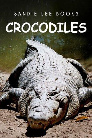 Crocodiles - Sandie Lee Books (children's animal books age 4-6, wildlife photography, animal books nonfiction)
