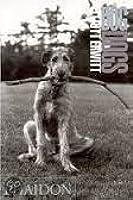 Elliott Erwitt: Dogdogs