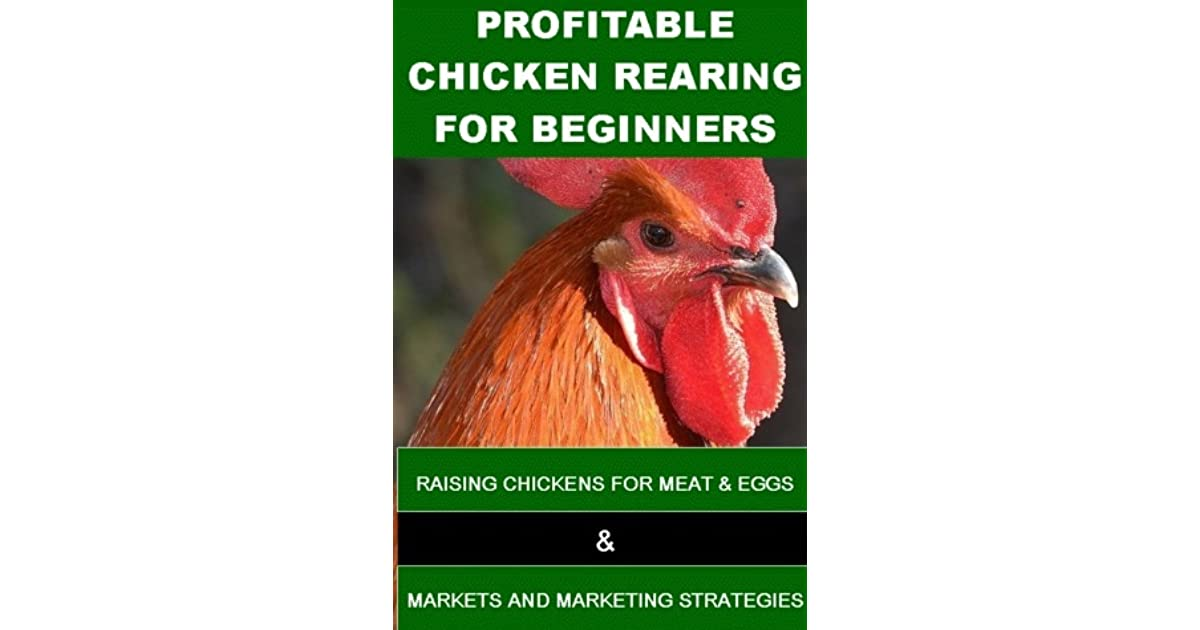 Download Profitable Chicken Rearing For Beginners Raisng Chickens For Meat Eggs And Markets And Marketing Strategies By Francis Okumu