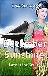 December Sunshine: Love in Jave Series (Love in Java Book 1)
