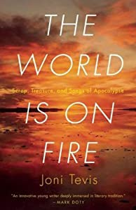 The World is on Fire: Scrap, Treasure, and Songs of the Apocalypse
