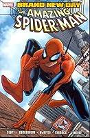 Spider-Man - Brand New Day, Vol. 1
