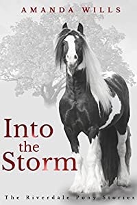 Into the Storm (The Riverdale Pony Stories, #3)