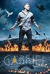 Gabriel (The Styclar Saga, #2)