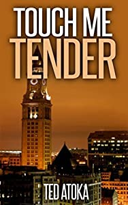 Touch Me Tender (Bean Town Investigations Book 1)