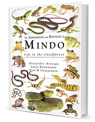 The Amphibians and Reptiles of Mindo Life in the Cloudforest