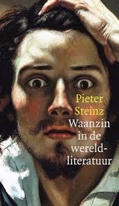Waanzin in de wereldliteratuur by Pieter Steinz