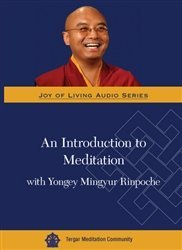 An Introduction to Meditation with Yongey Mingyur Rinpoche (Joy of Living Video Series)