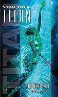 Stürmische See (Star Trek: Titan, #5)