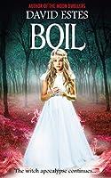 Boil (Salem's Revenge, #2)