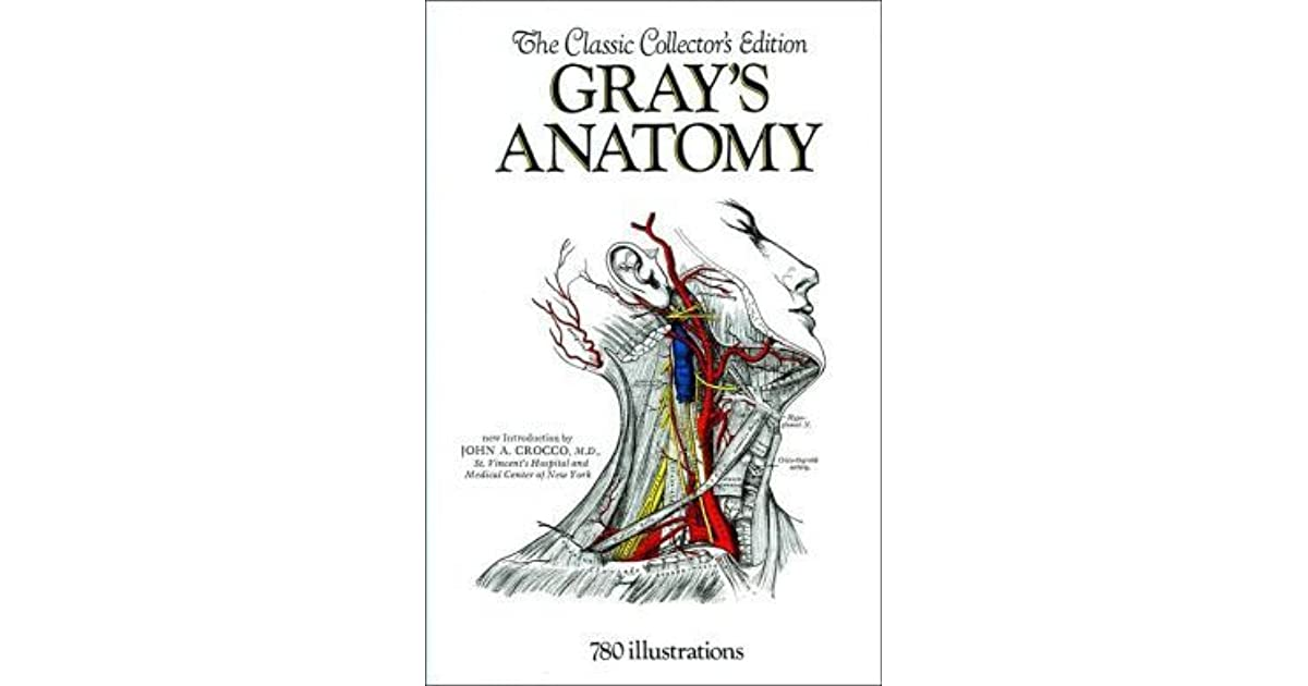 Grays Anatomy By Henry Gray