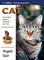 Cat: A Practical Guide to Caring for Your Cat