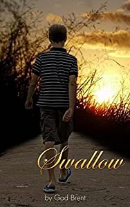 SWALLOW: A Young Adult Science Fiction Adventure (The Kyle Stark Chronicles Book 1)